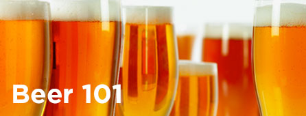 Beer 101 - all about beer
